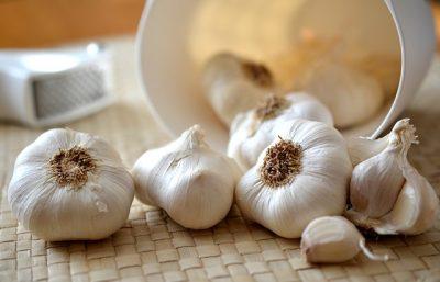 czosnek - właściwości zastosowanie ziół w kuchni